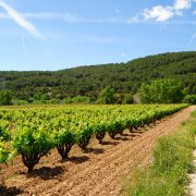 catalonia road cycling tours specialized