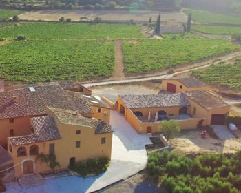 Visita cellars and wineries by bike in the penedès