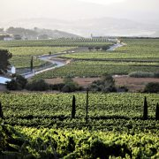 Wine Country by roadbike Barcelona