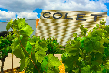 COLET BIKE EXPERIENCE, penedès wine and bike tours