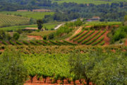 Cycling in Catalonia Self Guided Cycling Holiday
