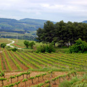 classic penedes bike tour, Self-Guided Road Cycling Holiday Barcelona, Catalonia.