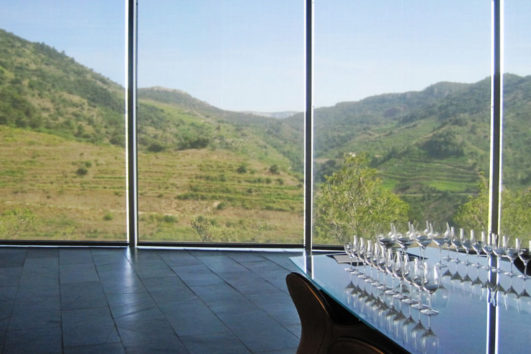 INLAND SOUTH CATALONIA Bike Tour Specialized   Wine Tasting Tours By Bicycle Outside Barcelona - Penedès