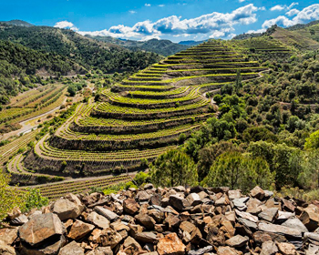 Wintourism and bike priorat